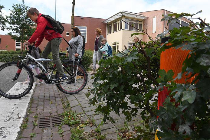 De Waai in Cuijk. foto: Ed van Alem