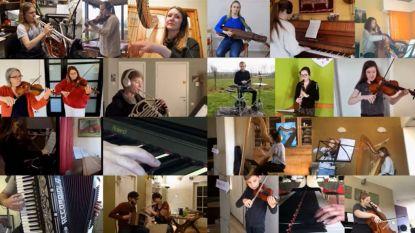 """Melodie 'Lockdown Waltz' van Zottegemnaar gaat de hele wereld rond: """"Zelfs vanuit ons kot kunnen we muziek maken"""""""