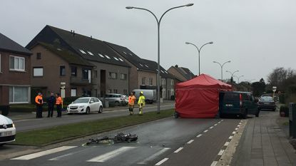 Fietsster (37) sterft bij aanrijding in Overpelt