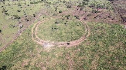 Onderzoekers ontdekken mysterieuze sporen van meer dan miljoen mensen in 'onbewoonde' Amazonegebieden