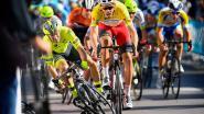 KOERS KORT. Baby op komst voor Kittel - Laporte wint na discutabele finish - Pauwels naar Dauphiné