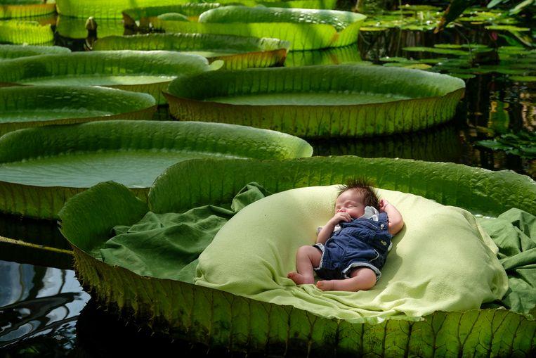 De jongste baby was amper twee maanden oud en deed een dutje tijdens zijn avontuur.