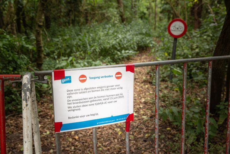 Afgelopen zomer was het speelbos aan de Blaarmeersen verboden terrein omdat de Groendienst er moest snoeien en rooien.