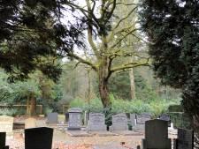 Online naar het graf van opa; welke plaatsen volgen Ermelo en Harderwijk?