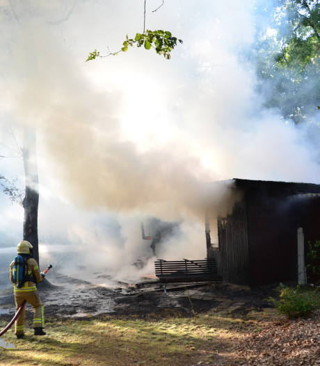 Chalet in Harfsen brandt volledig uit