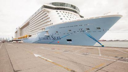"""""""Brugge overspoeld door cruisetoeristen, leefbaarheid binnenstad in het gedrang"""""""
