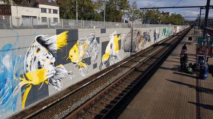 Graffitikunstwerken station Halle worden pas eind september afgewerkt