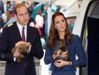 Prins William en Kate Middleton verwelkomen nieuwe pup in de familie