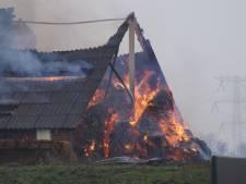Niet twee maar één geit omgekomen bij stalbrand in Dongen