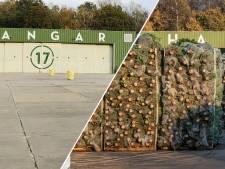 Geen kerstboominvasie op Vliegveld Twente dit jaar