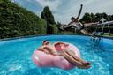 Een zwembad in de tuin in Gendringen.