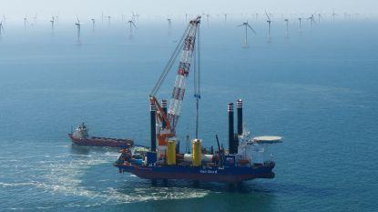 Nieuw windmolenpark geeft 400.000 gezinnen elektriciteit