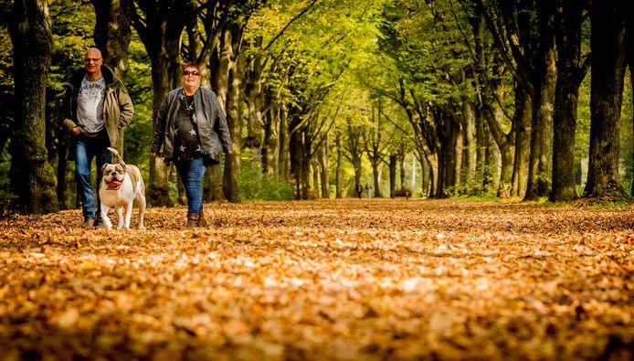 Mensen genieten van het lekkere herfstweer in het Amsterdamse Bos.