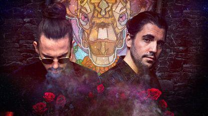 Meteen 4 shows: Dimitri Vegas & Like Mike brengen magie van Tomorrowland naar Sportpaleis met 'Garden of Madness'