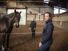 Hoe Albergse Linda paarden inzet om mensen van hun trauma af te helpen