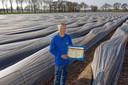 Breda - 01-04-2019 - Pix4Profs / Johan Wouters - Aspergeteler Marco van Aart uit Breda tussen zijn asperges.