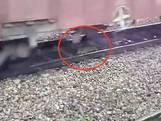 Hondje ligt op het spoor in India