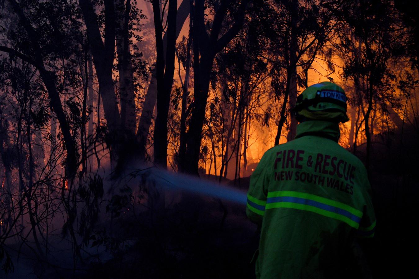 Brandweer probeert het vuur te blussen in Woodford in New South Wales.