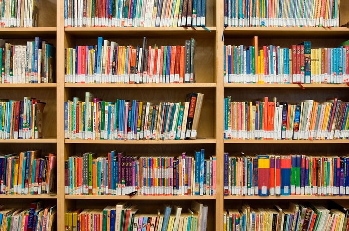 In de toekomst zal de Maarheezer bibliotheek zich moeten bedruipen met 45.000 euro.