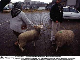 """""""Tijdelijke slachtvloeren zijn onwettig, ook in Brussel"""""""