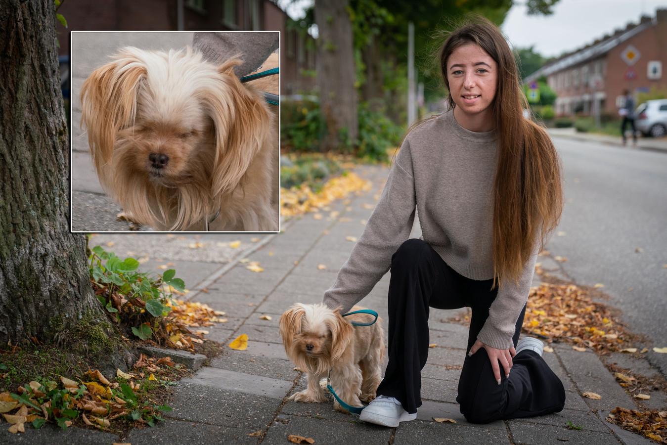 Esmee met haar ogenloze hondje Bella in de Bredestraat in Huissen.