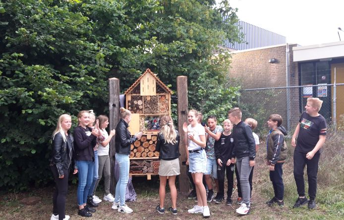 De leerlingen van groep 8 van basisschool De Veenbrug in Daarlerveen hebben een insectenhotel gemaakt.