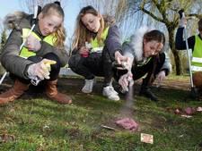 Schooljeugd Clinge in het verweer tegen hondenpoep met actie 'Flapdrol 2.0'
