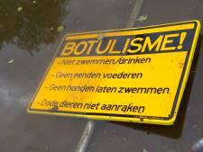 Water  in Nieuwegeinse wijk Batau-Noord nauwlettend gecontroleerd op botulisme