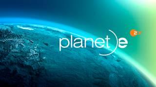 Planet e.: