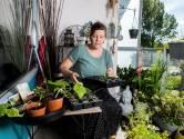 Renee zag de groeiende tomaten op haar balkon: 'We krijgen baby's!'