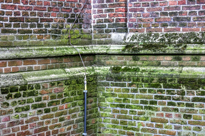 Uitzonderlijk Hoe verwijder je algen van dak, gevel, stoep of muur? | Nieuws KA37