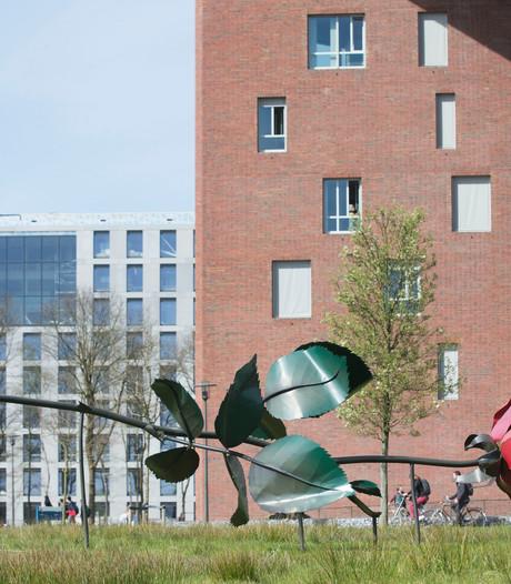 Hardloopwedstrijd tussen campussen Ede en Wageningen