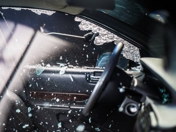 Verdachte in zelfde type sportieve Ford vist gestolen tomtom uit de bosjes, maar is hij ook de dader?