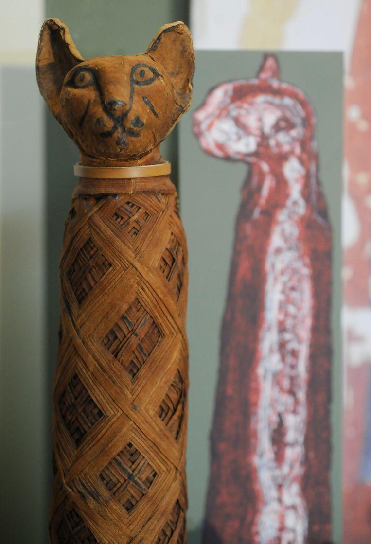 Een gemummificeerde Egyptische kat van rond 330 voor christus in het Smithsonian-museum in Washington. Beeld The Washington Post/Getty Images