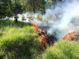 Brandweer rukt uit voorzorg groot uit bij natuurbranden, ook in Alphen en Bergen op Zoom