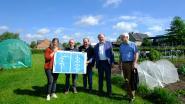 """Provincie helpt Schelle aan meer eetbaar groen: """"Volkstuin is al volzet"""""""