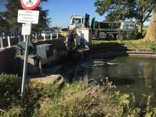 Extra pomp om rivier de Linge op peil te houden