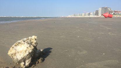 En toen lag er 350 kilo kaarsvet op het strand