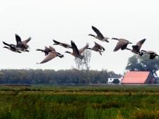 CDA wil cameratoezicht in noorden Biesbosch