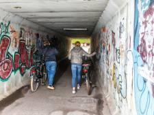 Wie heeft hét idee voor verfraaiing verwaarloosde Vollenhoofse tunnel?