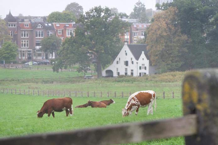 Park Sonsbeek in Arnhem op archiefbeeld.