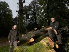 Ruim twee eeuwen oude rode beuk sneuvelt op landgoed Hackfort: 'We houden een klein stukje ter nagedachtenis'