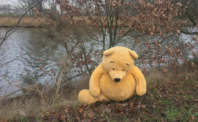 De in de steek gelaten Winnie de Poeh in Breda