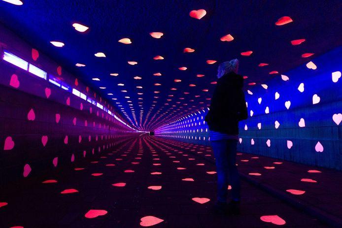 De 'Tunnel of love' (Dommeltunnel): een lichtproject van Studio VOLLAERSZWART. foto Kees Martens