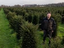 300.000 euro aan schade: bomenkweker uit Esbeek eist vergoeding van Waterschap