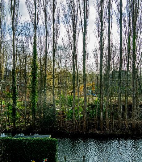 Achter de bomen verschijnt... een villawijk