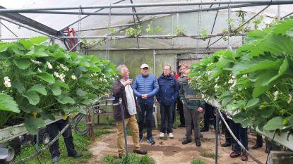 Landelijke Gilde Oudenaken en Sint-Laureins-Berchem organiseert Sneukeltocht langs streekproducten en landbouwers