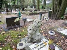 Is Prinsenbeek nu verlost van stank van dode dieren? 'De lust om te eten vergaat direct'