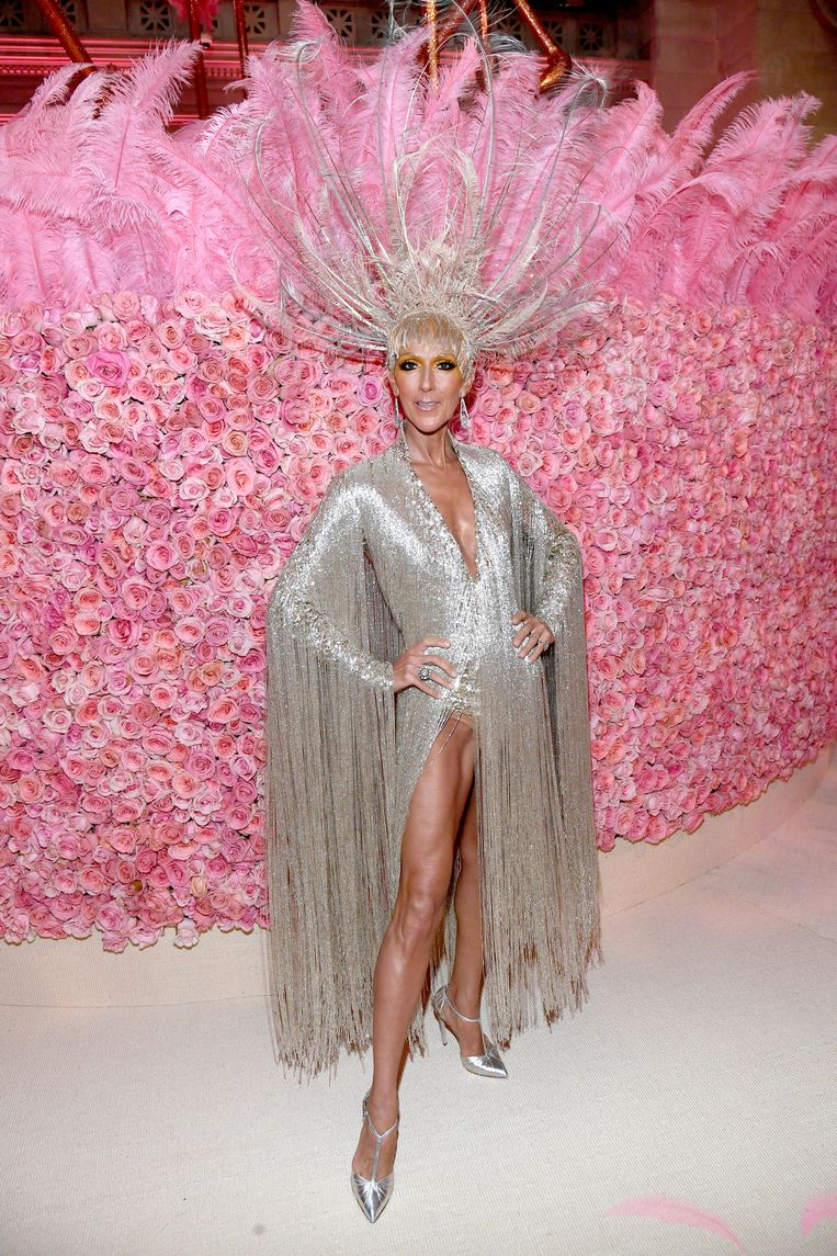 Céline Dion. Beeld Getty Images for The Met Museum/