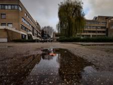 Helmond: 'Treurwilg achter stadskantoor kan echt niet worden verplaatst'